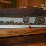 Relikwie św. Klary